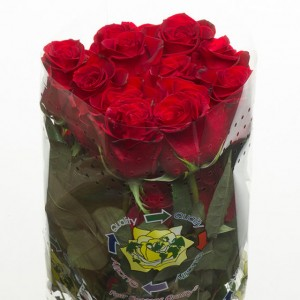 Rose Rosse 40cm recise