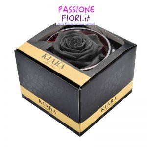 1 rosa stabilizzata nera