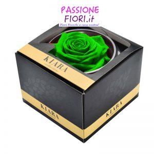 1 rosa stabilizzata verde