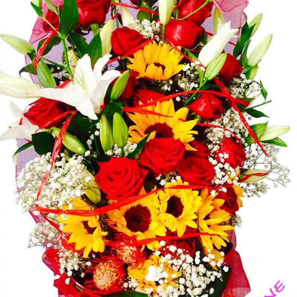 15 rose rosse con girasoli