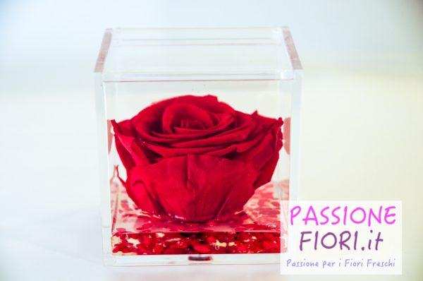 20 bomboniere rose stabilizzate in cubo trasparente online e prezzi ...