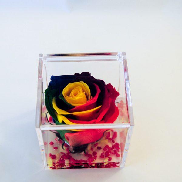 rose stabilizzate premium rose (9 di 53)