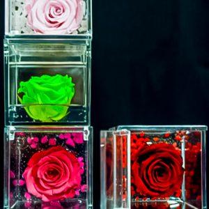 rosa stabilizzata rossa 6
