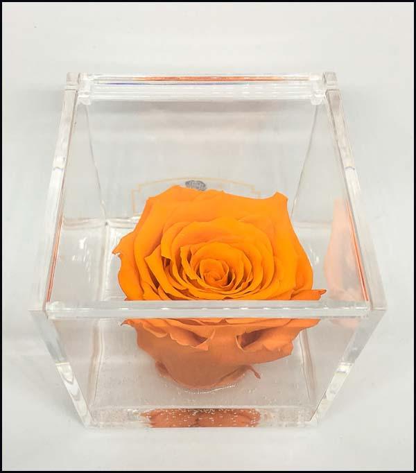 Cubo Rosa stabilizzata Arancione 8x8x8