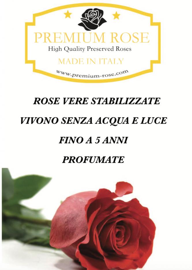 Scatola Tonda, Cilindro in Velluto 7 Rose stabilizzate Rosa e oro