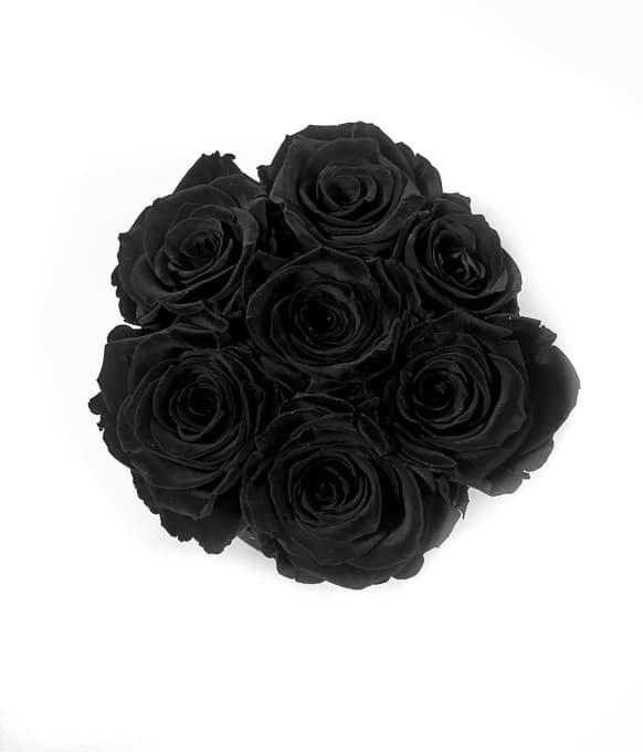 Scatola Tonda, Cilindro in Velluto 7 Rose stabilizzate Nere