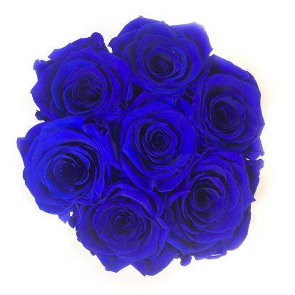 Scatola Tonda, Cilindro in Velluto 7 Rose stabilizzate Blu