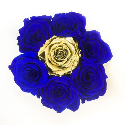 Scatola Tonda, Cilindro in Velluto 7 Rose stabilizzate Blu e oro