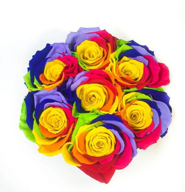 Box 7 Rose Multicolor rainbow in scatola tonda, Cilindro in velluto