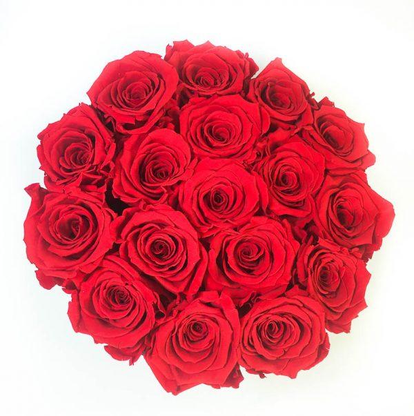 Scatola Tonda, Cilindro in Velluto 18 Rose stabilizzate Rosse