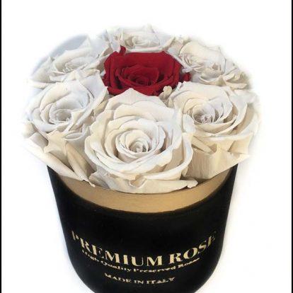 Scatola Tonda, Cilindro in Velluto 7 Rose stabilizzate Bianco e rosso