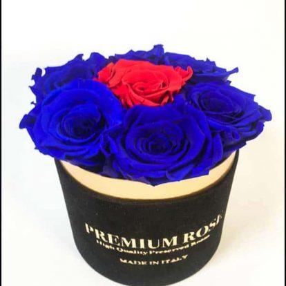 Scatola Tonda, Cilindro in Velluto 7 Rose stabilizzate Blu e rosso