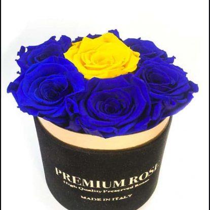 Scatola Tonda, Cilindro in Velluto 7 Rose stabilizzate Blu e giallo