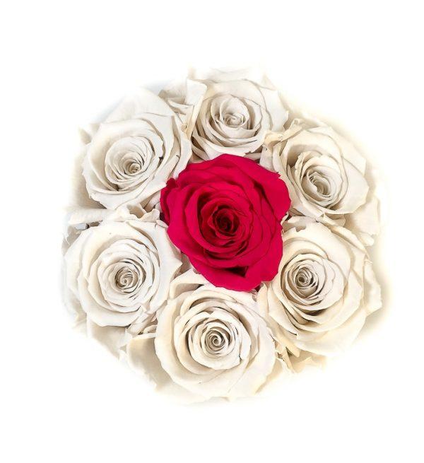Scatola Tonda, Cilindro in Velluto 7 Rose stabilizzate Bianco e fucsia
