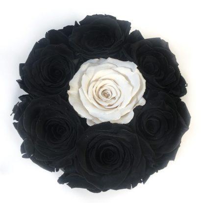 Scatola Tonda, Cilindro in Velluto 7 Rose stabilizzate Nere e bianco