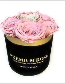 Scatola Tonda, Cilindro in Velluto 7 Rose stabilizzate Rosa e Bianco
