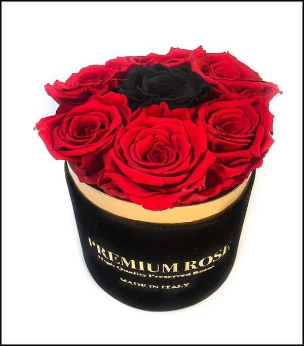 Scatola Tonda, Cilindro in Velluto 7 Rose stabilizzate Rosse e Oro